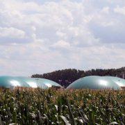Bildquelle / Lizenz: UDI Umwelt Direkt Invest; alle Rechte vorbehalten