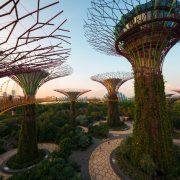 """the trees III (Singapore)""(CC BY 2.0)byKai Lehmann"