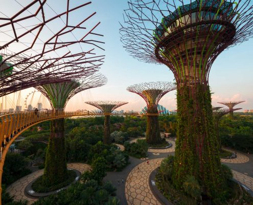 """the trees III (Singapore)"" (CC BY 2.0) by  Kai Lehmann"