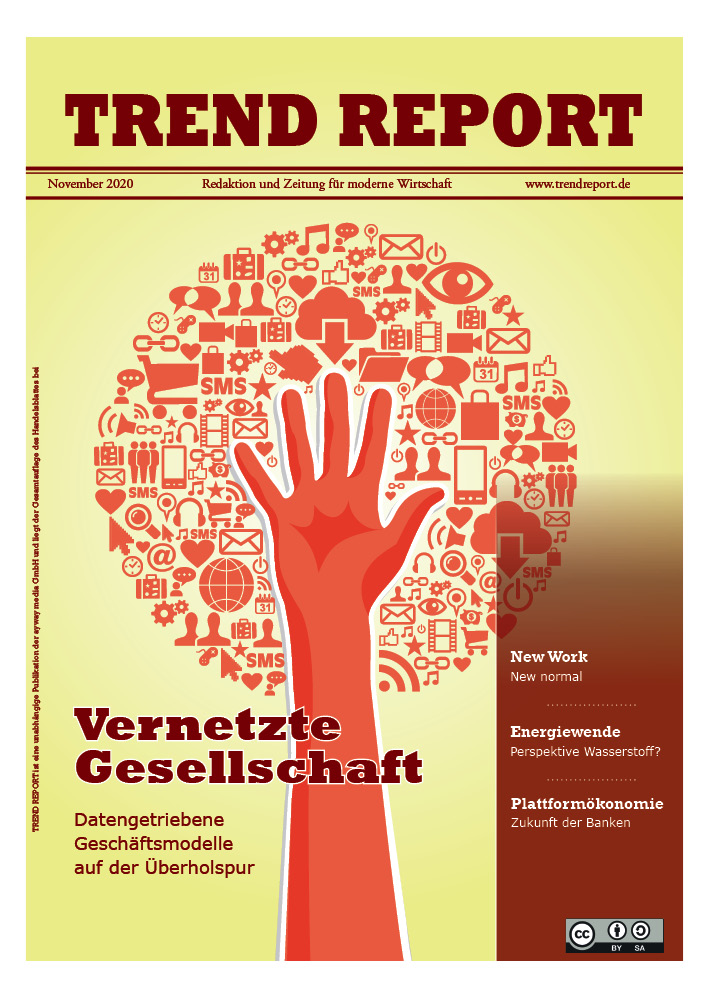 Cover Ausgabe November 2020